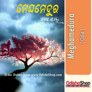 Odia Book Meghamedura By Pratibha Ray From Odisha Shop.